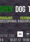 Дрессировка собак: open dog training