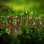 Паб «Gorkiy Pub»