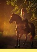 Катание на лошадях с Kava