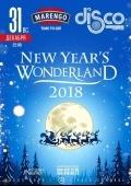 New Year's Wonderland 2018 в «Disco radio hall»