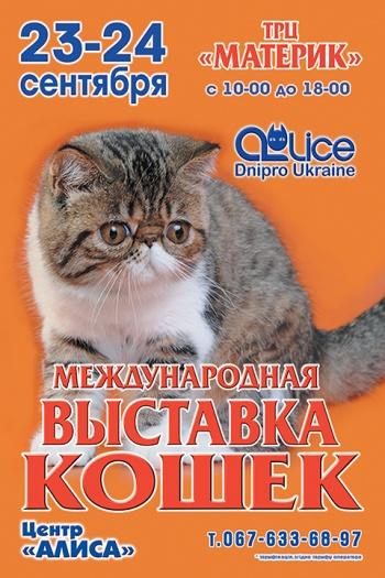 Международная выставка кошек @ТРЦ Материк